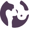 Ortopedia anca